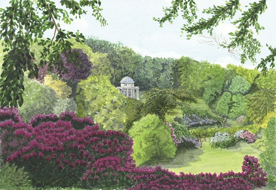 Rhododendronds at Stourhead